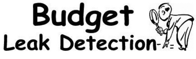Budget Leak Detection Website